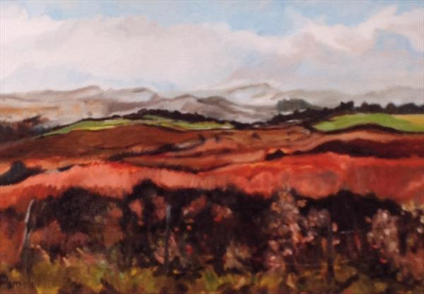 Peak District in Autumn by Pamela  Riddoch