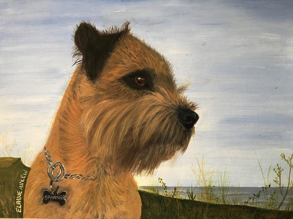 Spanner - Border Terrier by ELAINE ASKEW