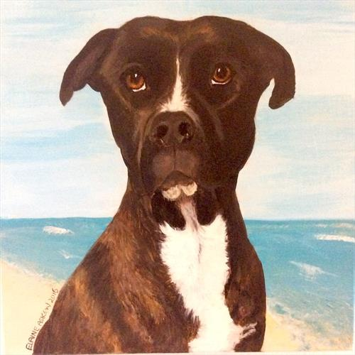 In Memory Of Anthea - Labrador Mix by ELAINE ASKEW