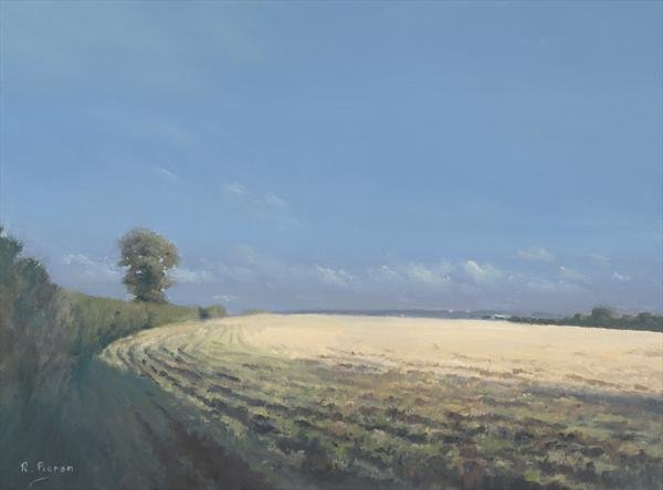 Field At Dunsden by Richard Picton