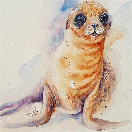 Baby Sea Lion by Arti Chauhan