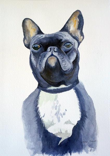 French Bulldog by Peter Baker