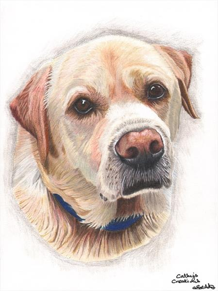 Buddy the Yellow Labrador by Cathy Settle