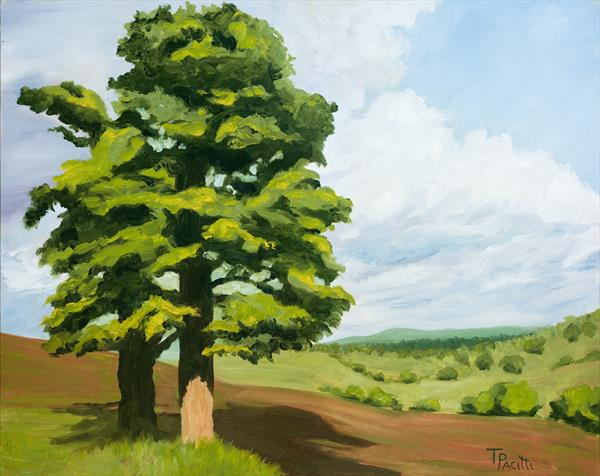 Bathgate Tree (West Lothian) Limited edition giclee by Tracey Pacitti
