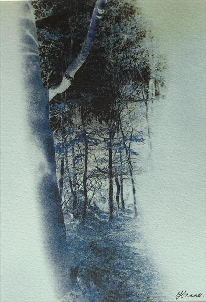 Negative tree scape by Teresa Tanner