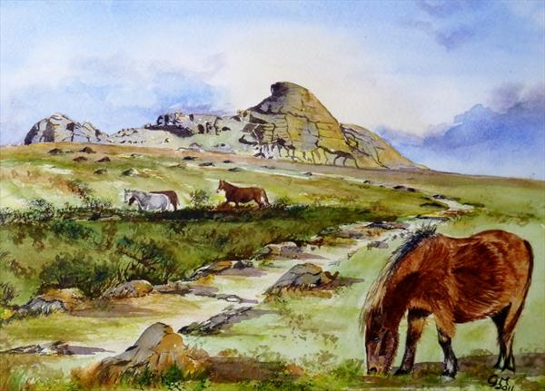 Dartmoor Ponies At Haytor Rock