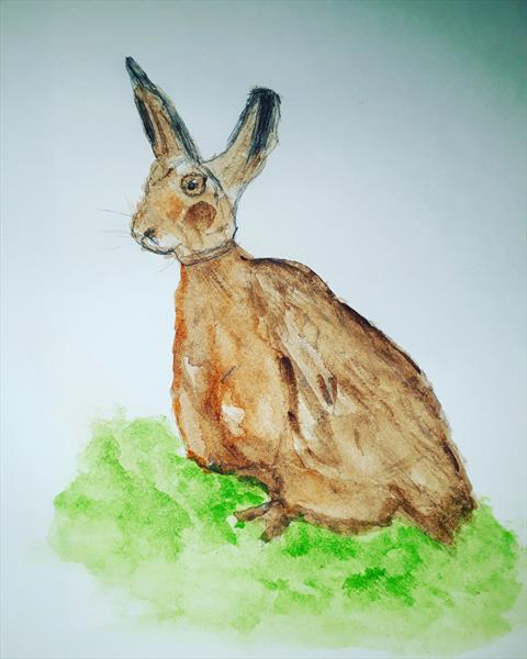 Brown Hare by Angela Conway