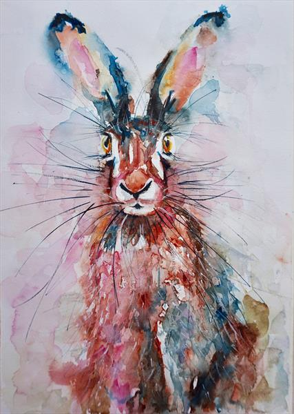 "Inquisitive Hare 12"" X 16.5"" by Anna Pawlyszyn"
