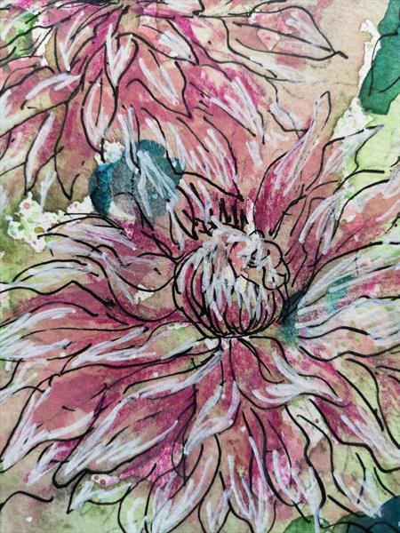 Markham pink clematis by Emma Cowlishaw