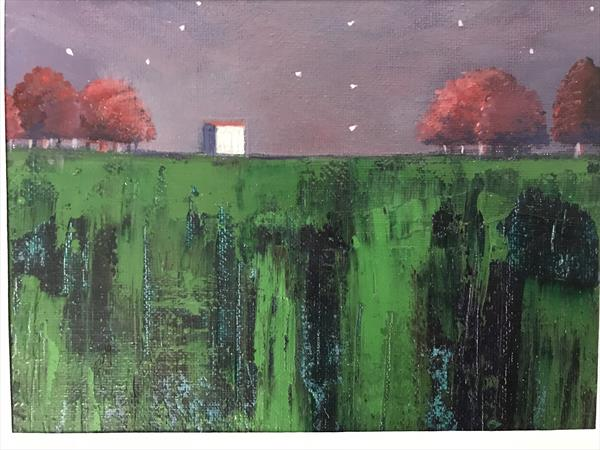 Waterswallow Meadows in the gloaming  by Sarah Gill