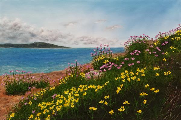 Wild Flowers on Hilbre by Hazel Thomson