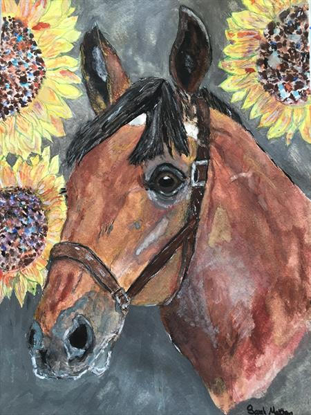 The Horse and the Sunflowers by Sarah  Matthews