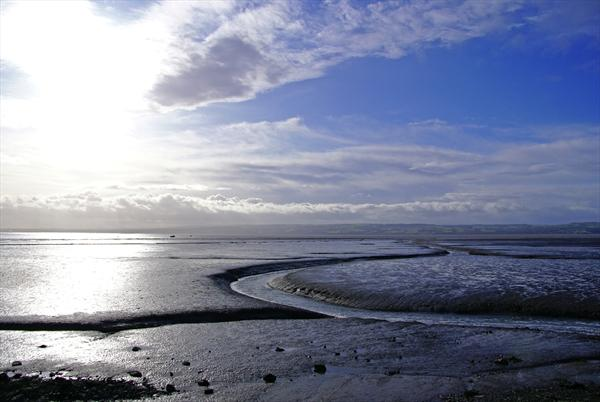River Dee At Low Tide by Rosie Gosden