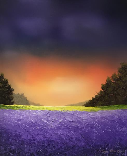 Lavender field  by dean walker