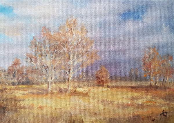 Autumn in Essex by Andrea Thomas