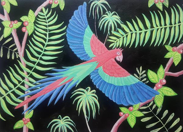 Macaw by Mary Stubberfield