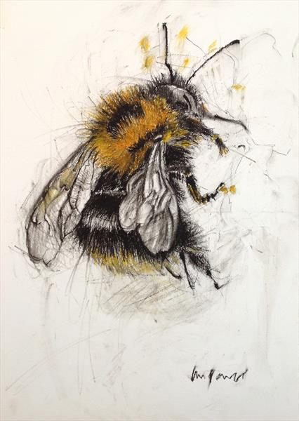 Bumble Bee #01 - A3 charcoal and pastel drawing