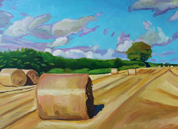 Near Scurlage Farm by Emma Cownie