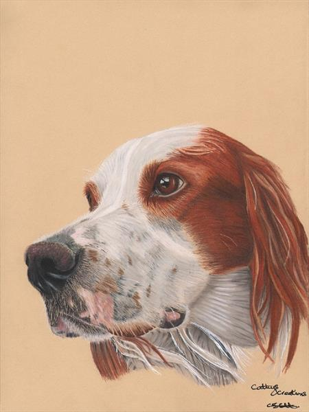 Jethro the Irish Red and White Irish Setter by Cathy Settle