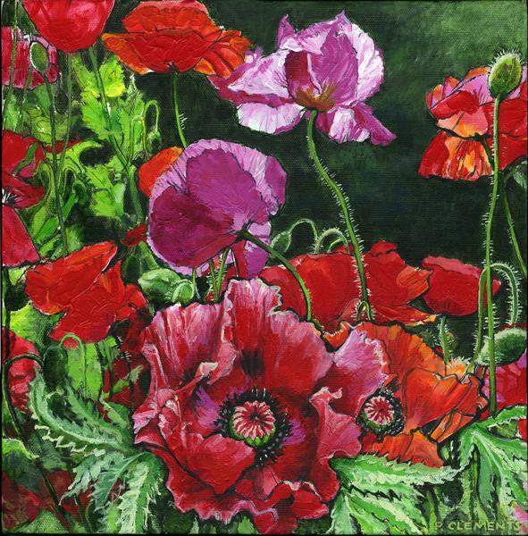 Red Poppies (Giclee Print) by Patricia Clements