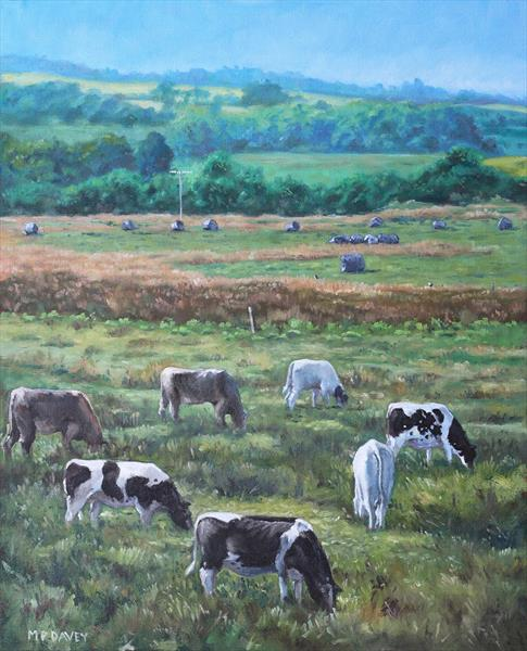 Cows In A Field In The Devon Countryside by Martin  Davey