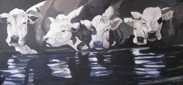 Cows by Dawn Ogden-white