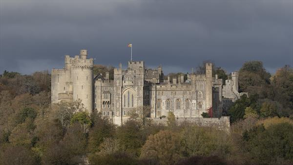 Arundel Castle  by Timothy Vincent