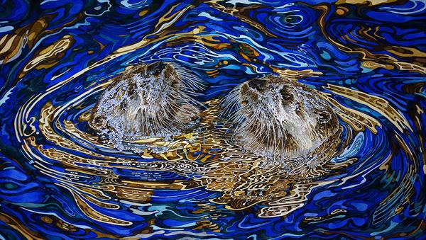 Otters in Harmony  by Rhian Symes