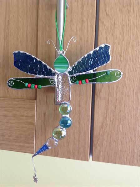 The Dragonfly  by Julie Stevenson