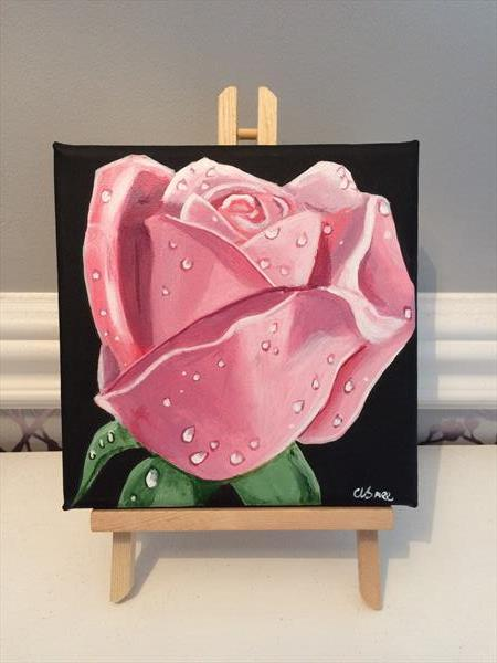 Pink Rose by Andrew Snee