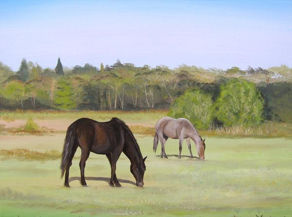 Ponies In The New Forest by Sarah Featherstone