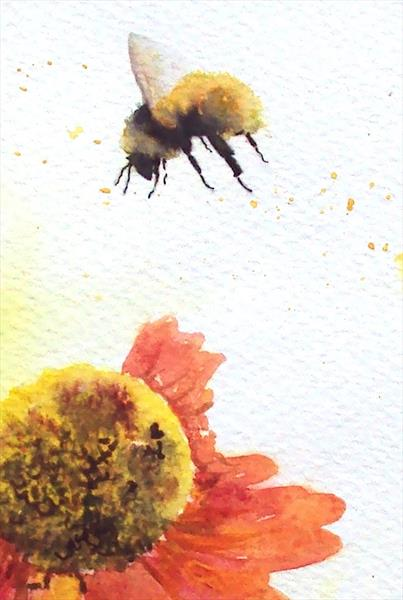 Bee & Helenium Flowers