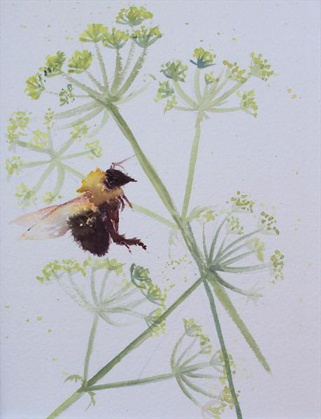 Bumble Bee Cow Parsley SALE