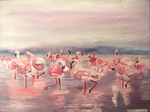 Flamingos by Ryan Louder