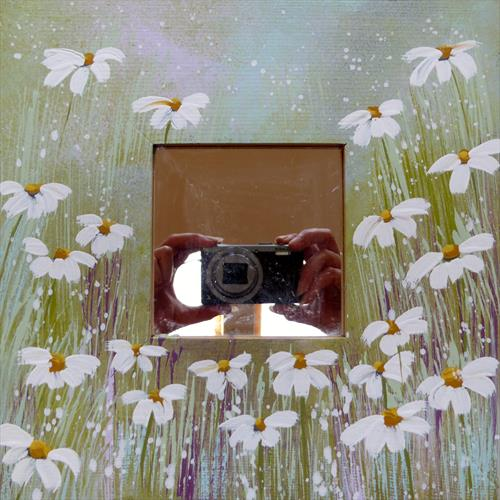 Peppermint Daisies Mirror by Elaine Allender