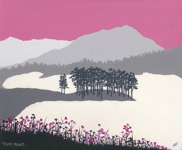 Tarn Hows, The Lake District by Sam Martin