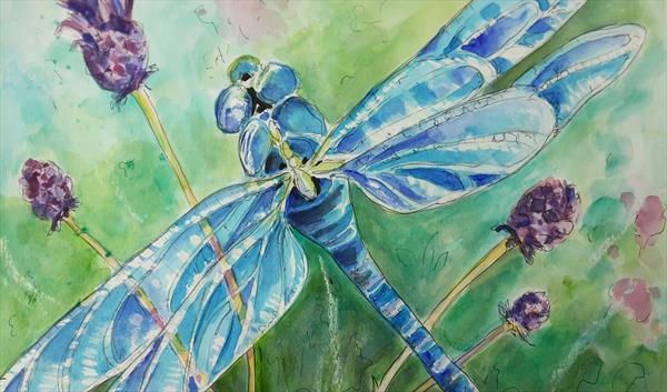 Dragonfly by Tracy Corker