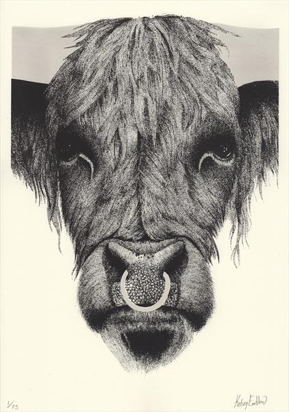 Highland Bull Screenprint by Kelsey Emblow