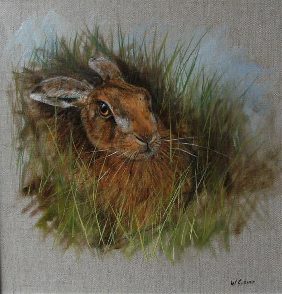 Hare in the grass by Wendy Sabine