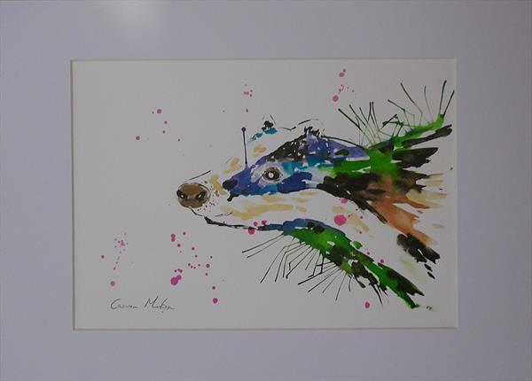 Colourful Badger by Casimira Mostyn