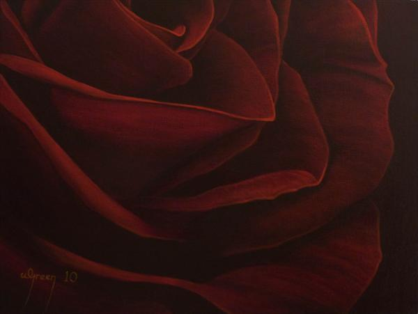 Red Rose 4 by Warren Green