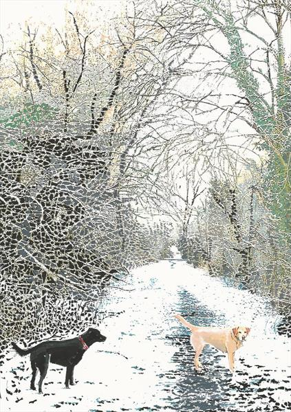 Dogs on the old railway track. by Peter Smith