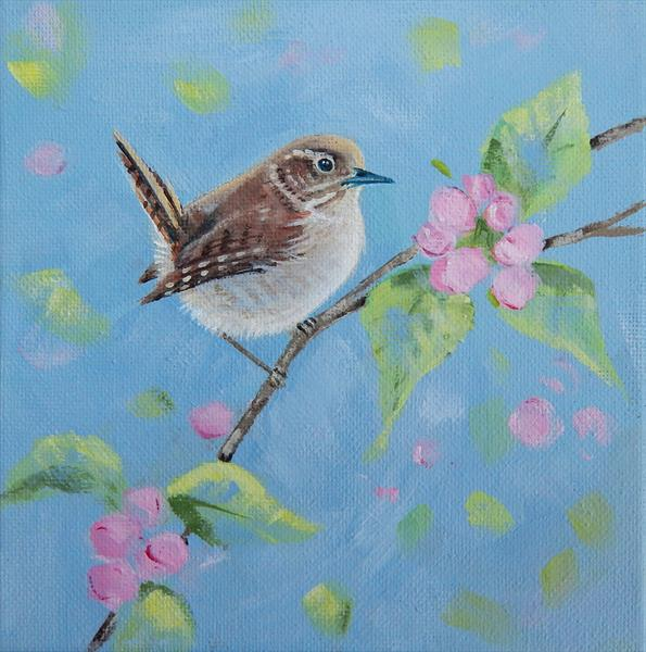 Spring Wren by Denise Coble