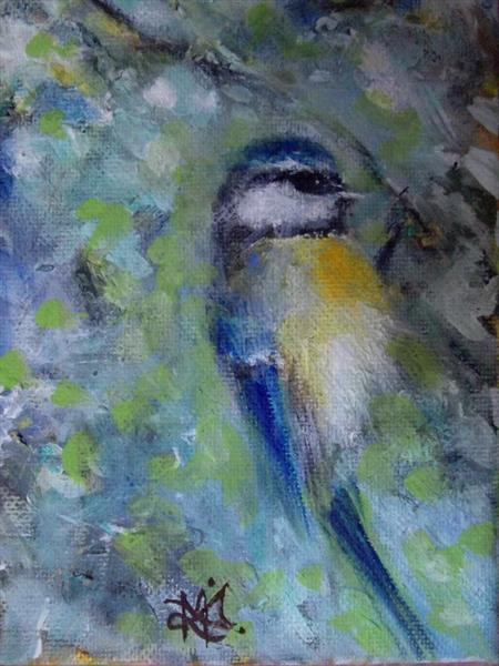 Blue Tit by Malcolm Menzies
