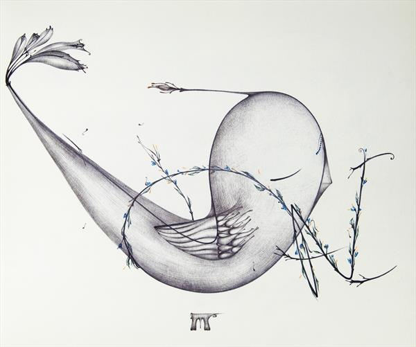 Bird by Manuela  Marchis