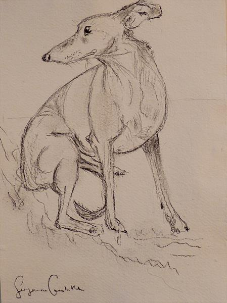 Whippet sheltering on the hill by Suzanne Carslake