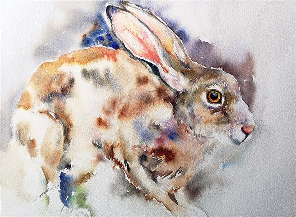 Raoul the Hare by Arti Chauhan