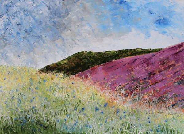 Summer Moorland by Paul Smith