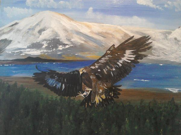Eagle landing by Phillip Speakman