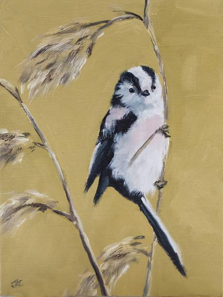 Long Tailed Tit on Reeds by John Crabb